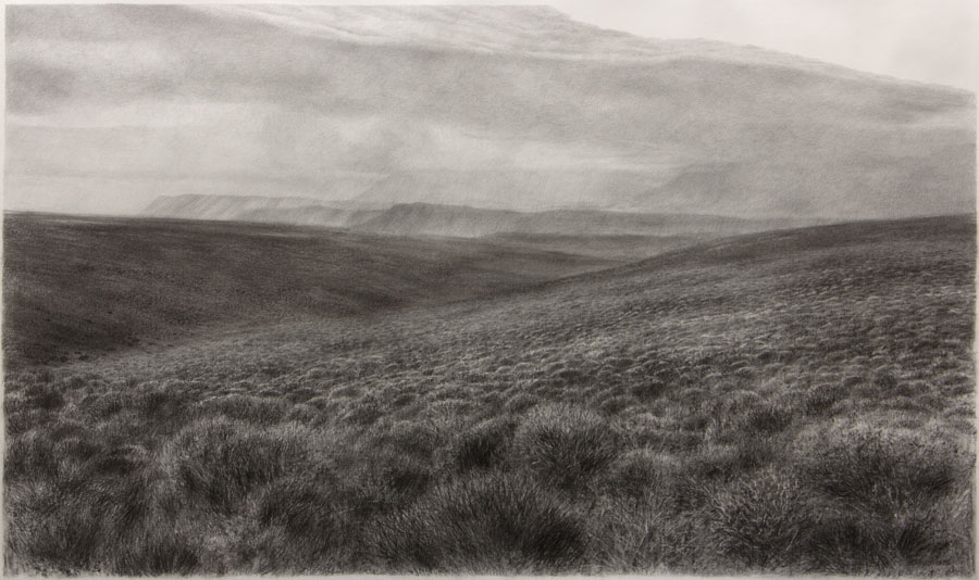 Karoo Alone VI, 90 x 150cm, charcoal and pencil on Fabriano paper 2