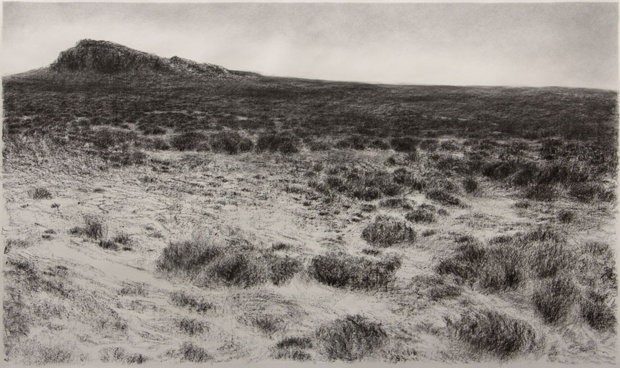 Karoo Alone VII, charcoal on Fabriano paper, 90 x 150cm